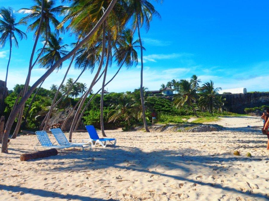 Barbados_beaches_2007_055